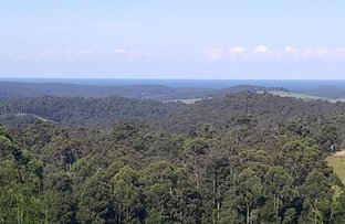 Picture of Lot 24 Pointer Road, Yatte Yattah NSW 2539