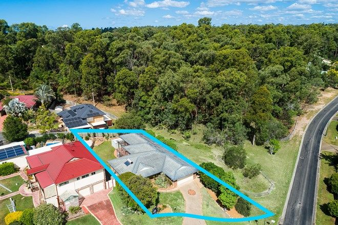 Picture of 8 Yellowjack Crescent, ALBANY CREEK QLD 4035