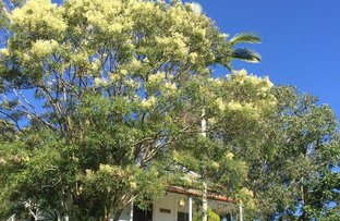 Picture of 78 Eulinga Court, Ninderry QLD 4561