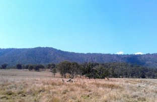 Picture of 1439 Christmas Creek Road, Christmas Creek QLD 4285