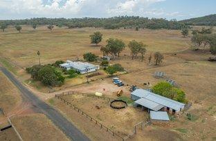 Picture of 84 Upper Bingara Road, Upper Bingara NSW 2404