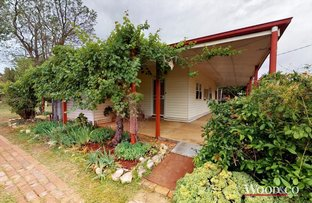 Picture of 22 Gray Street, Nyah West VIC 3595