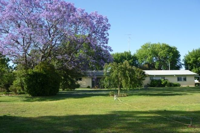Picture of Farm 1021 Pine Drive, COLEAMBALLY NSW 2707