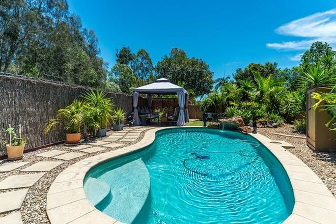 Picture of 36 Myola Court, COOMBABAH QLD 4216