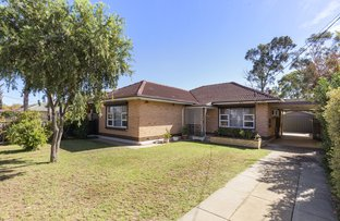 Picture of 140 Ridley Grove, Woodville Gardens SA 5012