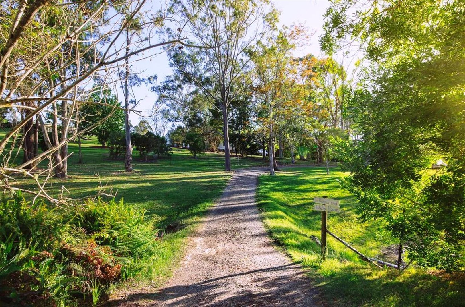 158 Teutoberg Ave, Witta QLD 4552, Image 1
