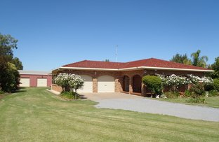 102 Petersham Road, Leeton NSW 2705