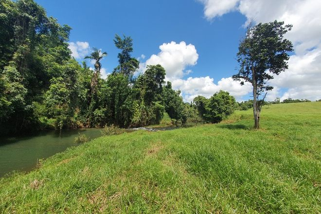 Picture of 219 Camp Creek Road, CAMP CREEK QLD 4871