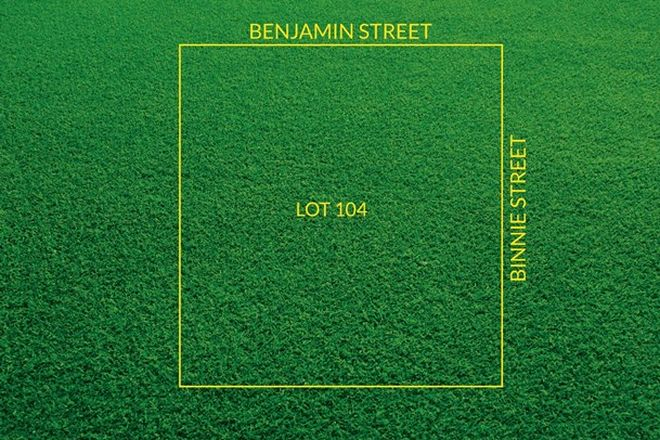 Picture of Lot 104 Benjamin Street, BORDERTOWN SA 5268