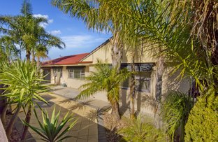 Picture of 30 Sawford Street, Largs Bay SA 5016