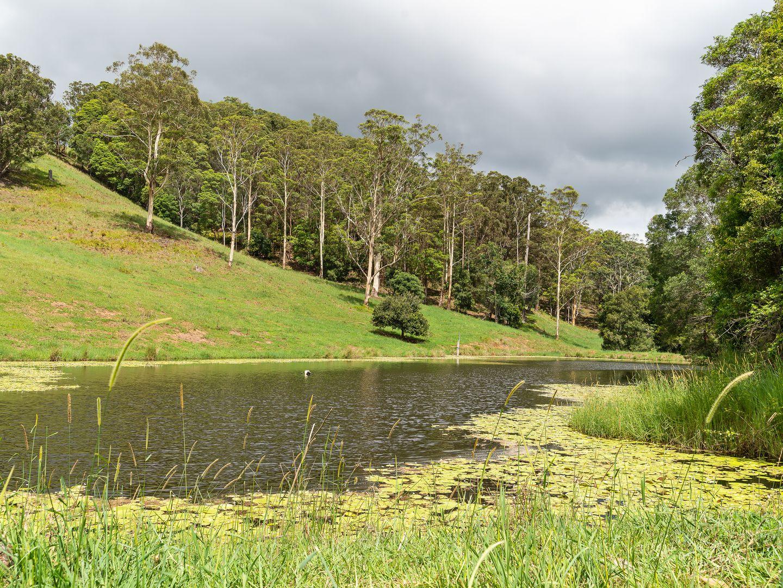 27 Ceylon Road, Belli Park QLD 4562, Image 2