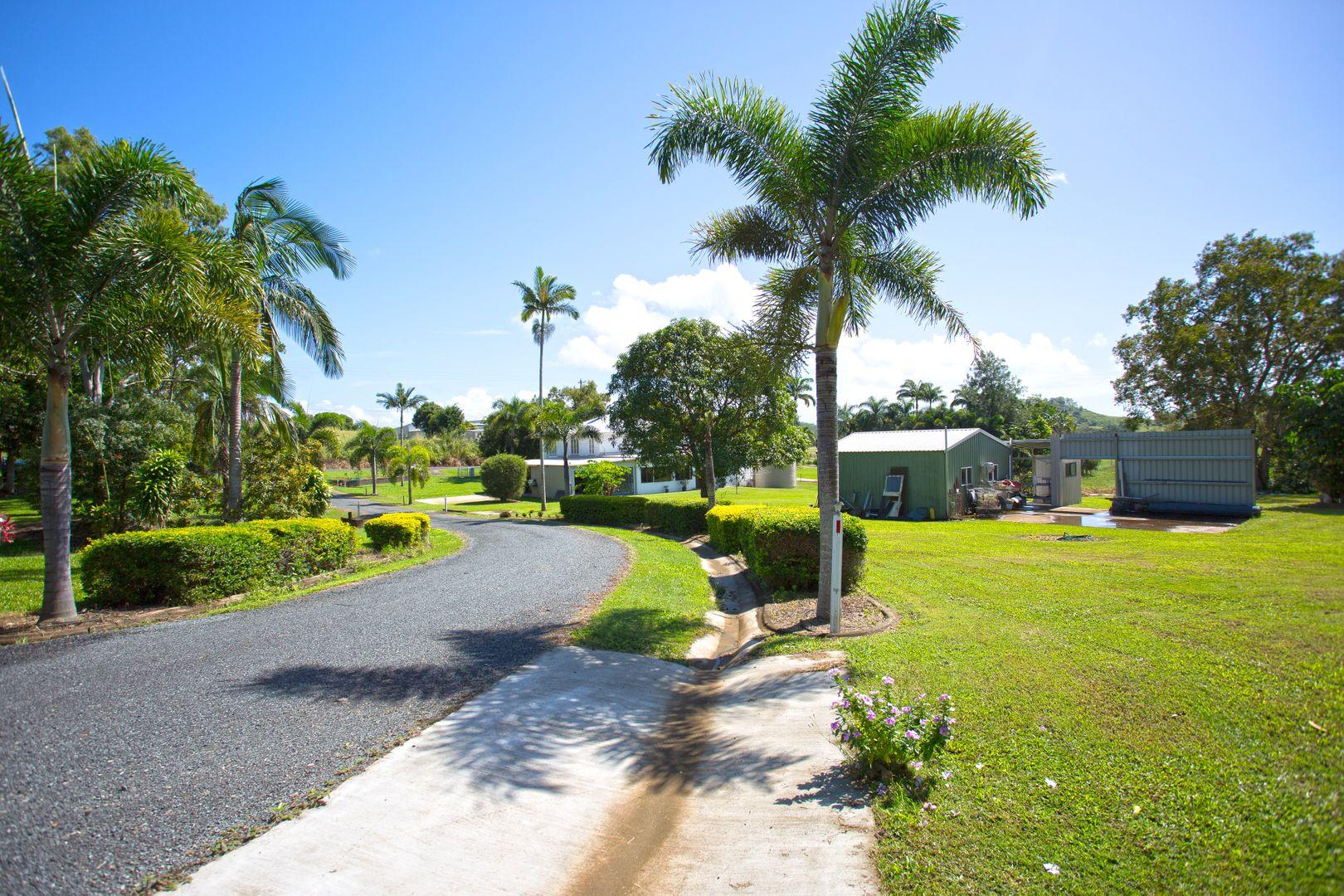 642 Farleigh-Habana Road, Farleigh QLD 4741, Image 1