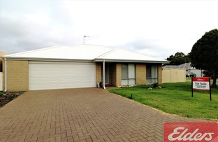 Picture of 33 Dawson Place, Donnybrook WA 6239