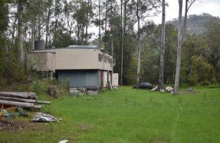 Picture of 461 Mangrove Creek Road, Mangrove Creek NSW 2250