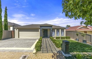Picture of 19 Mckinlay Avenue, Gilles Plains SA 5086