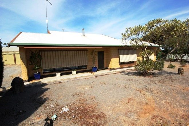 Picture of 1323 Mt Rat Wells road, CURRAMULKA SA 5580