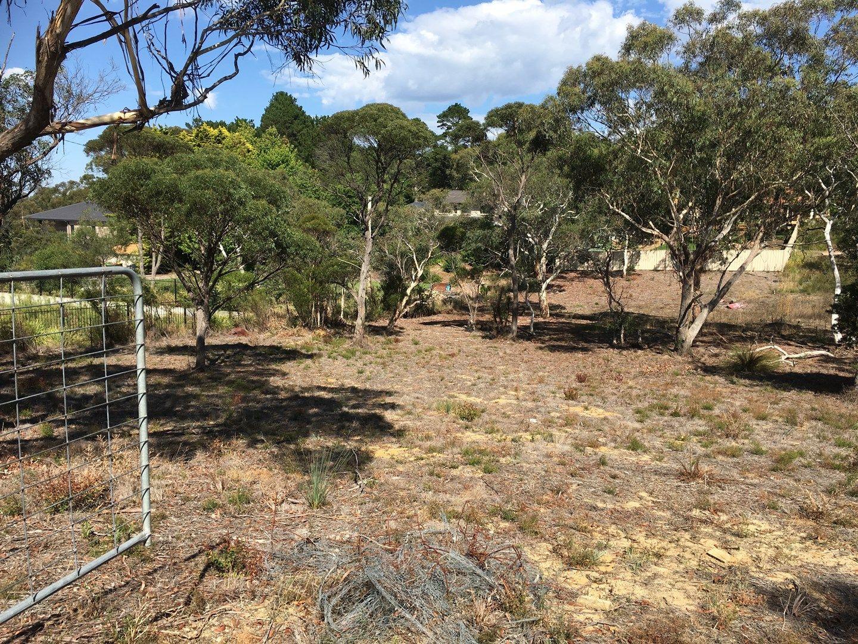 11  Sandbox Road, Wentworth Falls NSW 2782, Image 0