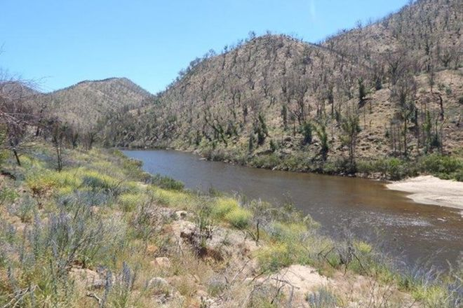 Picture of Lot 43 Bumbalong Fire Trail, BREDBO NSW 2626