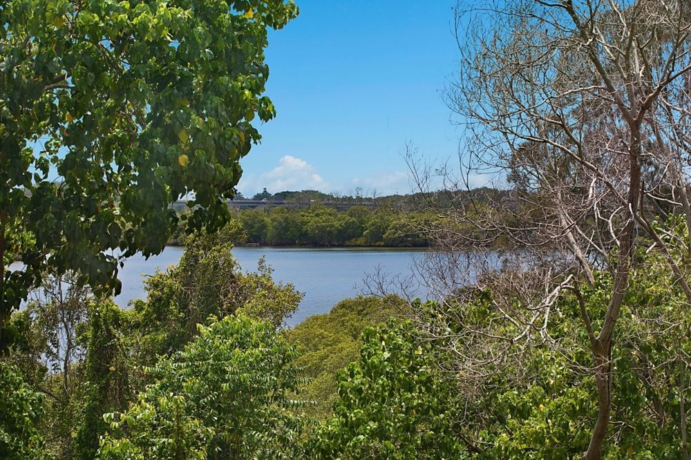 36 Old Ferry Road, Banora Point NSW 2486, Image 0