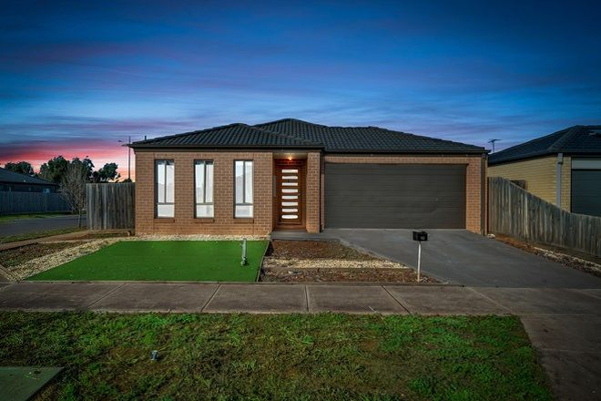 Picture of 10 Exon Street, MELTON SOUTH VIC 3338