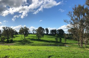 Picture of Watergum Drive, Pie Creek QLD 4570