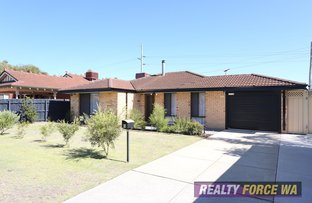 Picture of 3 Larissa Court, Ballajura WA 6066