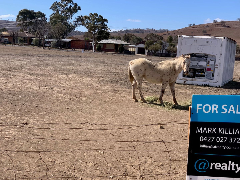 Lot 4 Queen Street, Barraba NSW 2347, Image 2