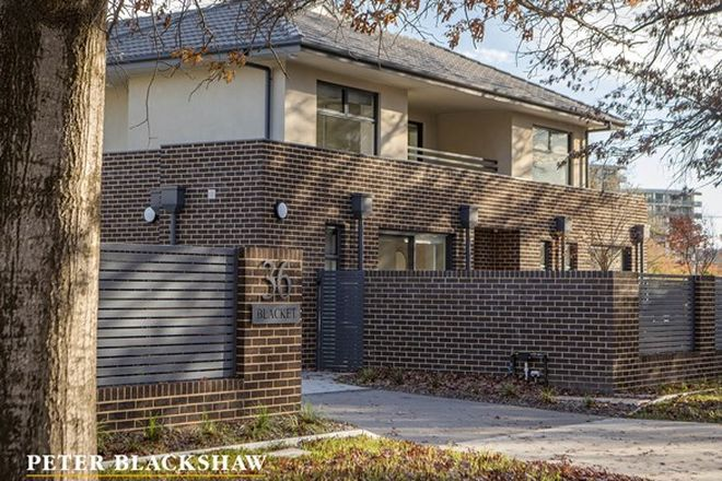 Picture of 1/36 Blacket Street, DOWNER ACT 2602
