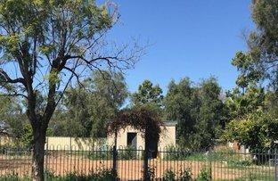 Picture of 46-50 Wingadee Street, Coonamble NSW 2829