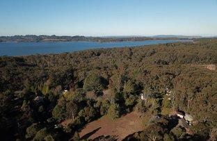 Picture of 7 Casuarina Crescent, Fitzroy Falls NSW 2577