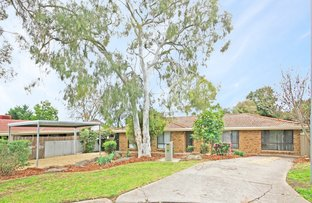 Picture of 3 Wild Court, Reynella East SA 5161