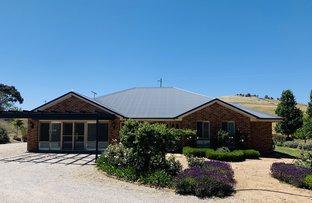 Picture of 10 Thomas Kite Lane, Orange NSW 2800