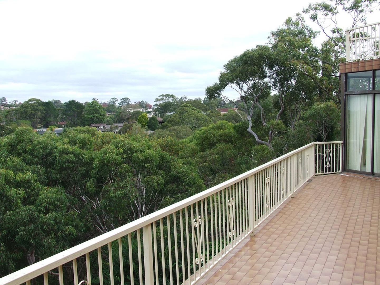 143A Koola Avenue, East Killara NSW 2071, Image 1