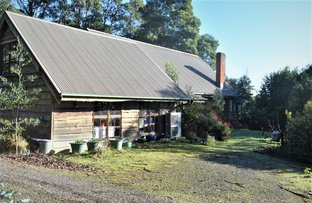 Picture of 148 Clarkes Road, Upper Stowport TAS 7321