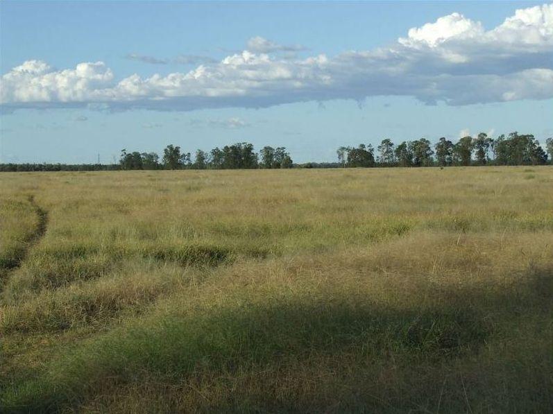 Lot 24 & 25 Texas Yelarbon Road, Glenarbon QLD 4385, Image 0