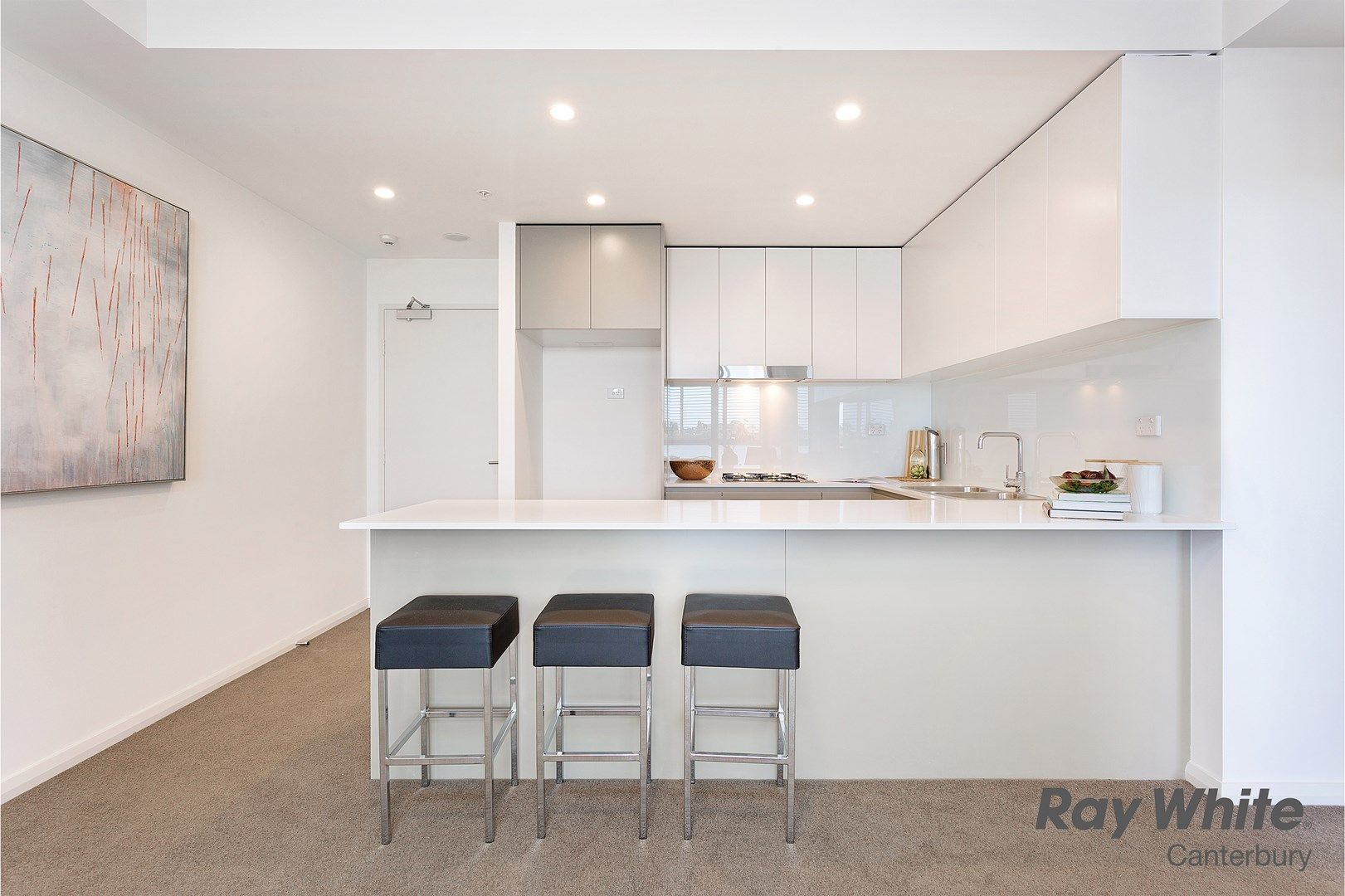 2a Charles Street, Canterbury NSW 2193, Image 0