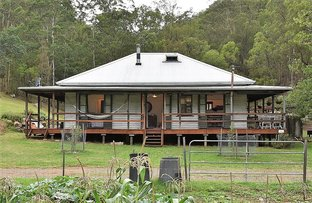 Picture of 346 Cedar Creek Road, Cedar Creek NSW 2325