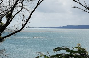 Picture of 7 Pacific Street, Lamb Island QLD 4184