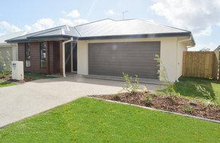 Picture of 10 Graham Court, Pimpama QLD 4209