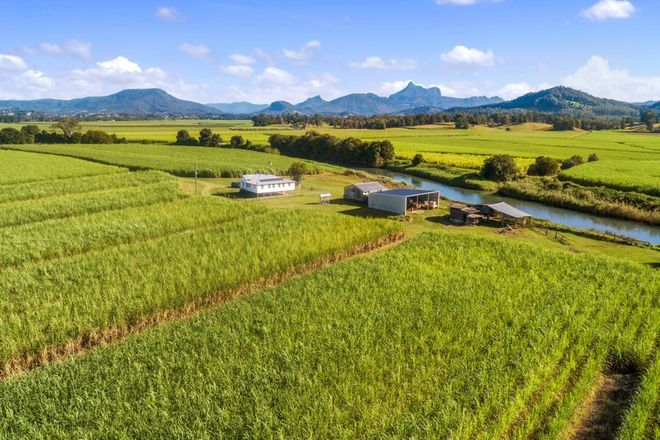 Picture of Lot 9 McCloys Road, TYGALGAH NSW 2484