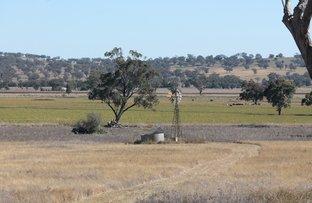 Lot 24 Swinging Ridges Road, Warrah Creek NSW 2339
