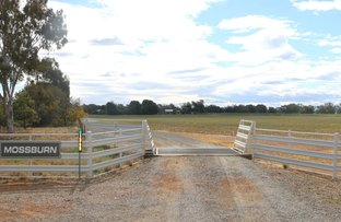 Picture of 1368 DWYERS ROAD, Parkes NSW 2870