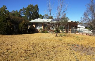 Picture of 5 Olive Pyrke Terrace, Warialda NSW 2402