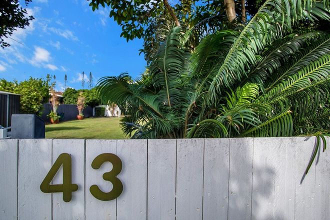 Picture of 43 Zelma Street, GRASSTREE BEACH QLD 4740