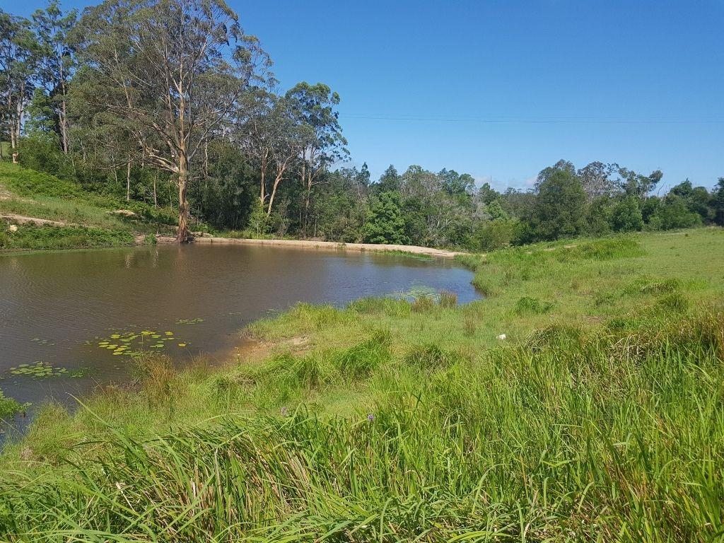 Allgomera Road, Allgomera NSW 2441, Image 1