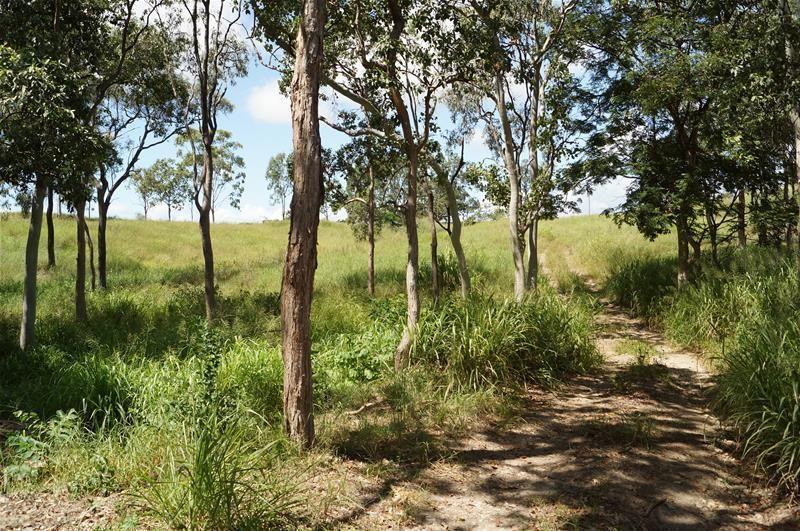 57 (Lot 57) Maudsley Road, Sarina QLD 4737, Image 2