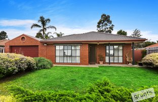 Picture of 17 Cyprus Place, Pakenham VIC 3810