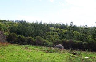 Picture of B/27 Tevarua Lane, Norfolk Island NSW 2899