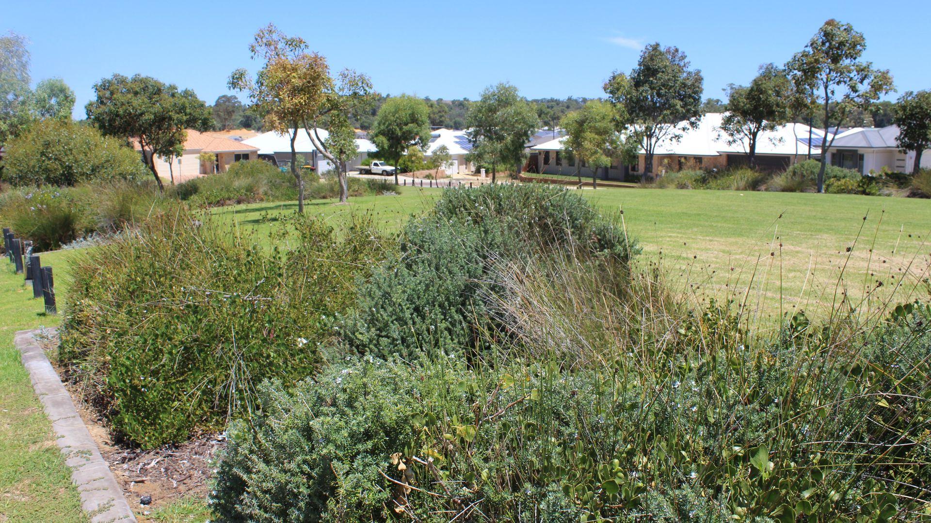 35 Liddard Gardens, Baldivis WA 6171, Image 1
