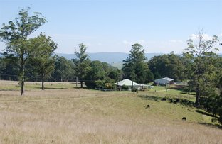 Picture of Nowendoc NSW 2354